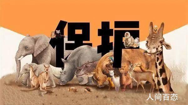 北京全面禁止食用野生动物 6月起施行