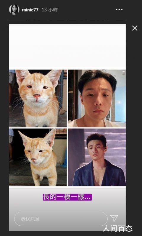 杨丞琳认证李荣浩撞脸猫咪 长得一模一样
