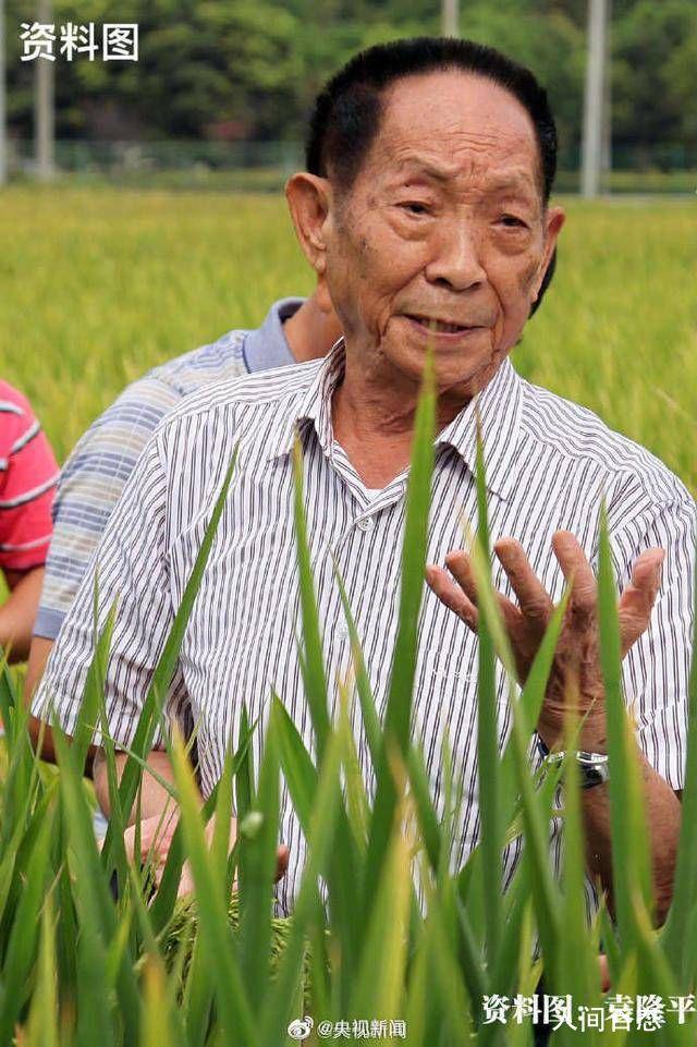 袁隆平获聘农民丰收节推广大使 参与丰收节民俗
