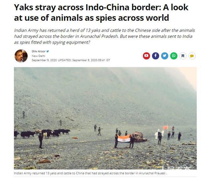 印军向中国归还17头牦牛 暗指这些牦牛可能是被派过来的动物间谍