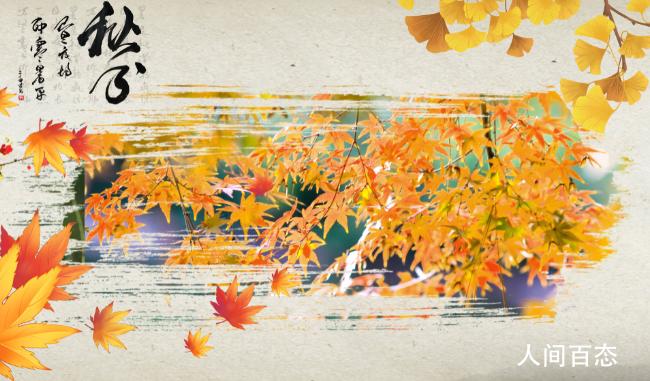 今年秋分是法定假日吗 秋分节气的含义是什么