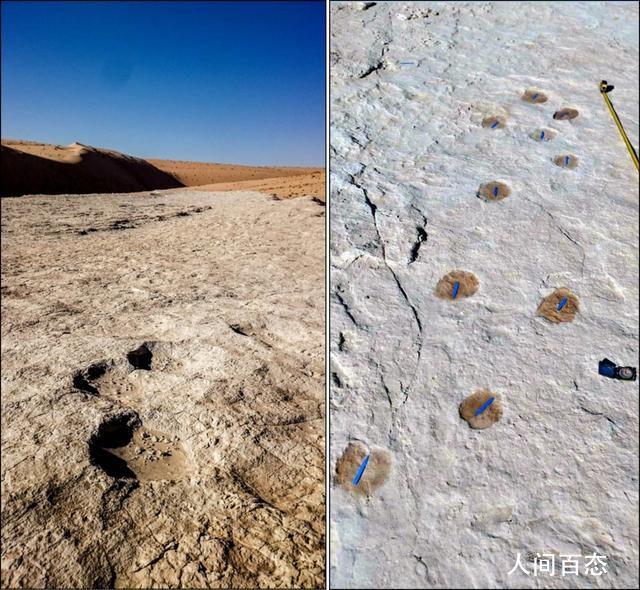 沙特发现距今12万年前的人类脚印 是迄今在阿拉伯半岛上发现的最古老的人类生命证据