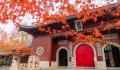 秋分有什么美好寓意 秋分节气的含义是什么