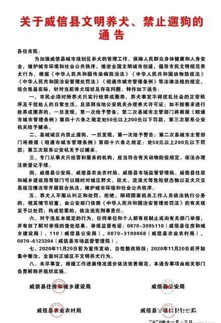 云南一地禁止遛狗 违反三次捕杀