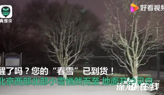 北京西部北部小雪悄然而至 你上一次看到下雪是什么时候