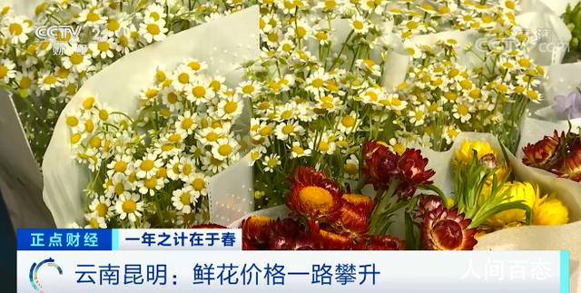 鲜花涨价近4倍 三八妇女节临近鲜花需求量大增