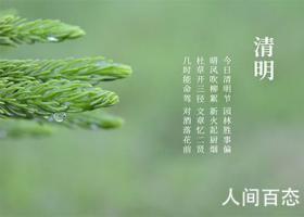 2021年清明节是几月几日星期几 关于清明节的句子介绍