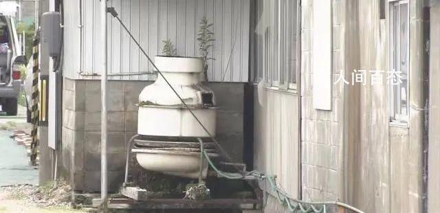 日本发生中小学大规模食物中毒 牛奶的生产企业下达了停止营业的处分