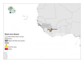 世卫:几内亚第二波埃博拉疫情结束 此次疫情共造成12人死亡