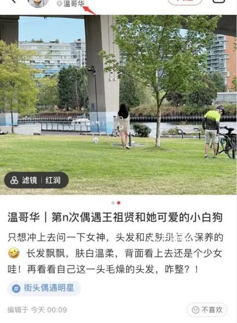 网友温哥华偶遇王祖贤遛狗 背面看上去还是个少女哇