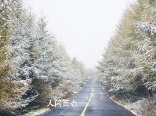 全国多地首场降雪 构成一幅静谧的美丽画卷